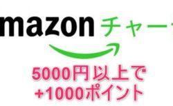 【Amazonで更に安く買う方法】5000円以上チャージで初回もれなく1000ポイント付与! 次回以降も最大2.5%還元中~