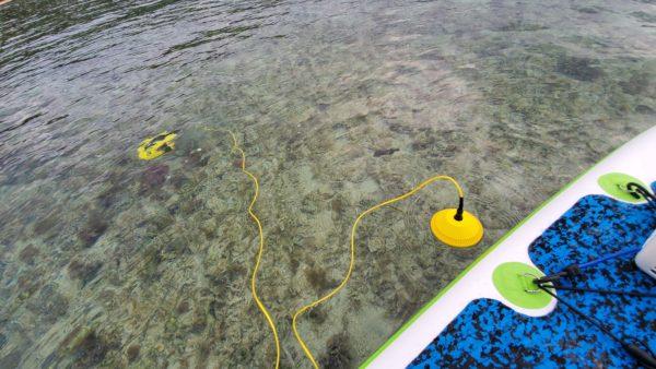 水中ドローン CHASING DORY 実機レビュー