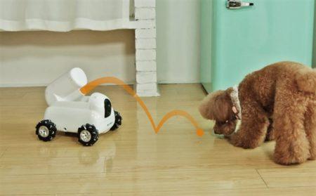 ペット用ロボットでトイレ掃除や餌やり猫じゃらしで遊ばせることも!?「Pumpkii」がIndiegogoに登場予定
